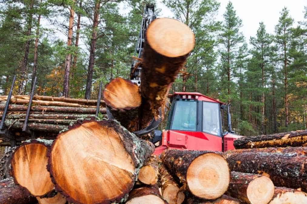 How to turn a log into lumber by hand to